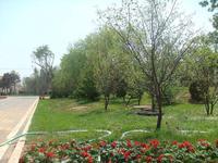 成都園林綠化工程