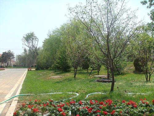 成都园林绿化工程